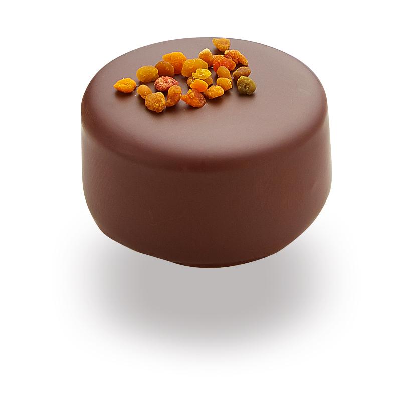 Bonboniera - Medene čokoladne praline z medom in cvetnim prahom